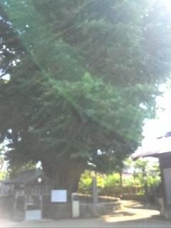 KIMG2084.JPG